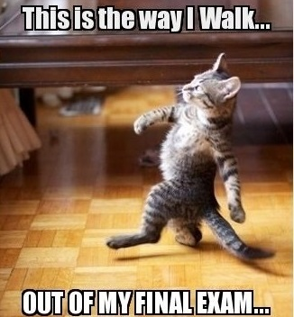 Final Exam Bootcamp!